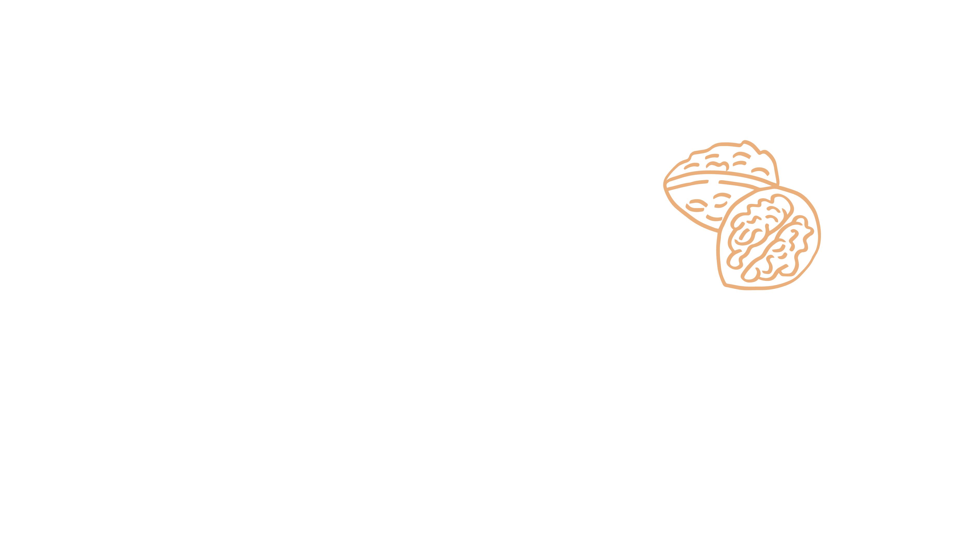 Ernährungsberatung Hirsch Personal Training Berlin Logo Weiß